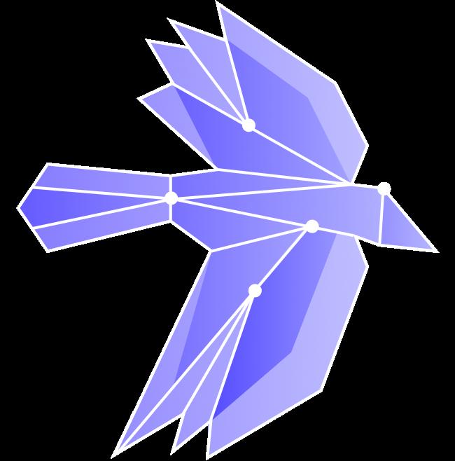 FlyingBird_2Wings_Overhead-1